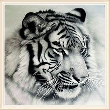Lukisan Harimau Hitam Putih Cikimm Com