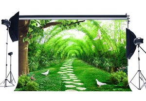 Image 1 - Countyard Garden Backdrop Spring Green Arch Trees White Dove Fresh Flowers Green Grass Meadow Rock Background