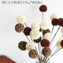 פרחים מיובשים טבעי דקורטיבי עיצוב הבית DIY Crafting אביזרי מיובש פירות כפרי תפאורה חתונה קישוטים