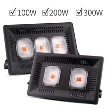100W/200W/300W LED Grow Lights Full Spectrum Indoor Grow Lights for Plants Veg&Flower in Greenhouse Tent Plant