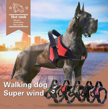 2019 New spot manufacturers direct sale of pet supplies in the large dog collar traction rope chest strap