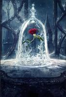 children kids background High quality Computer print Beauty Beast Red Rose Flowers Leaves Cage Castle photo backdrop