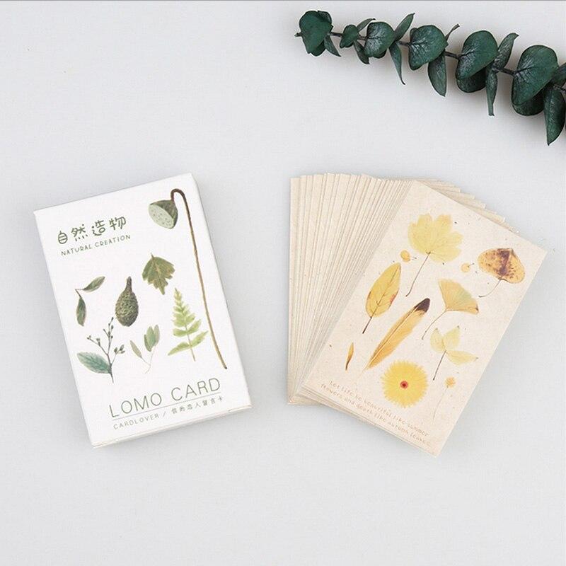 28-pcs-set-natural-folhas-de-plantas-de-mini-cartao-lomo-cartao-postal-cartao-memo-cacoa-o-presente-de-papelaria-kawaii