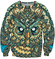 2016 autumn New Fashion Mens/Women Sweatshirts religion god owl of dreams 3D Print Sweatshirt fashion clothing pullover