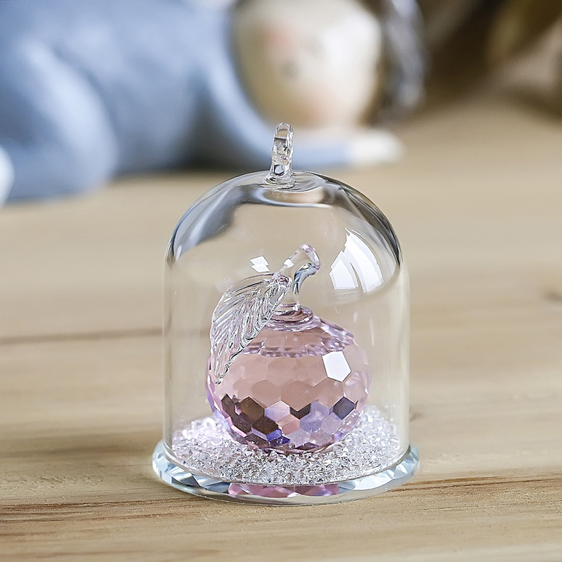 H&D Crystal Clear Apple in Terrarium Paperweight Crafts&Collection Table Ornaments Souvenir Home Wedding Decor Birthday Gifts