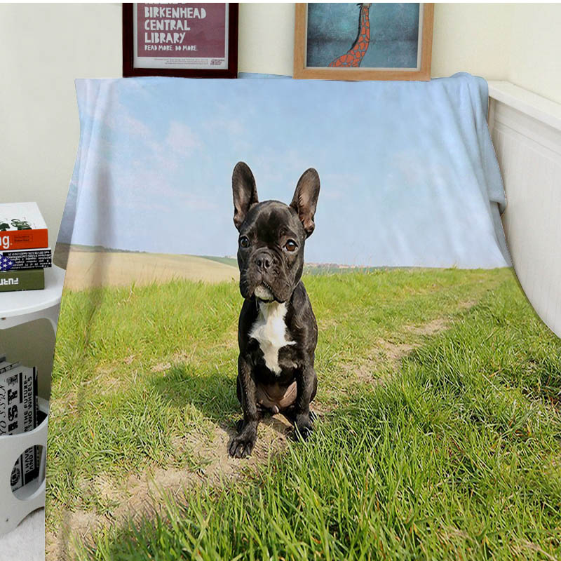 Blankets Comfort Warmth Soft Cozy Air conditioning Easy Care Machine Wash Funny French Bulldog Puppy