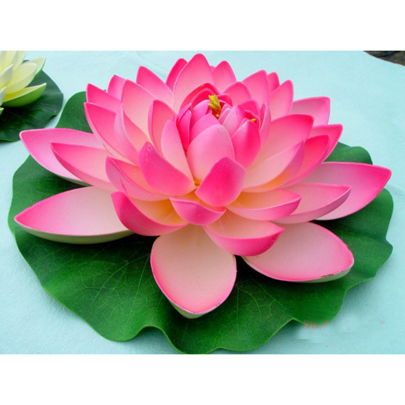 online get cheap water lily lotus flower aliexpress  alibaba, Natural flower