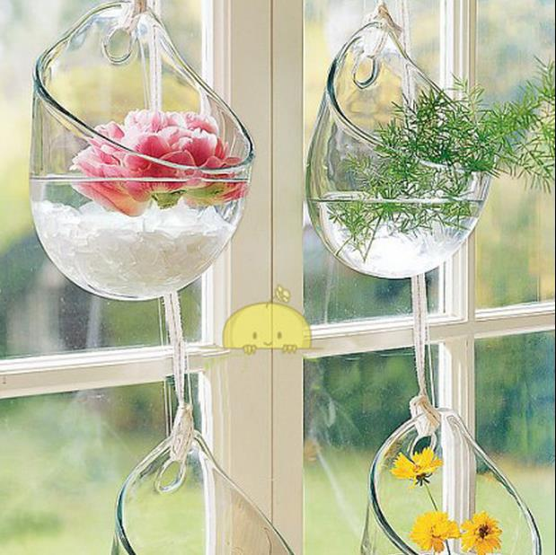 Free Shipping Home Decor Creative Glass Vase Water Planting Glass