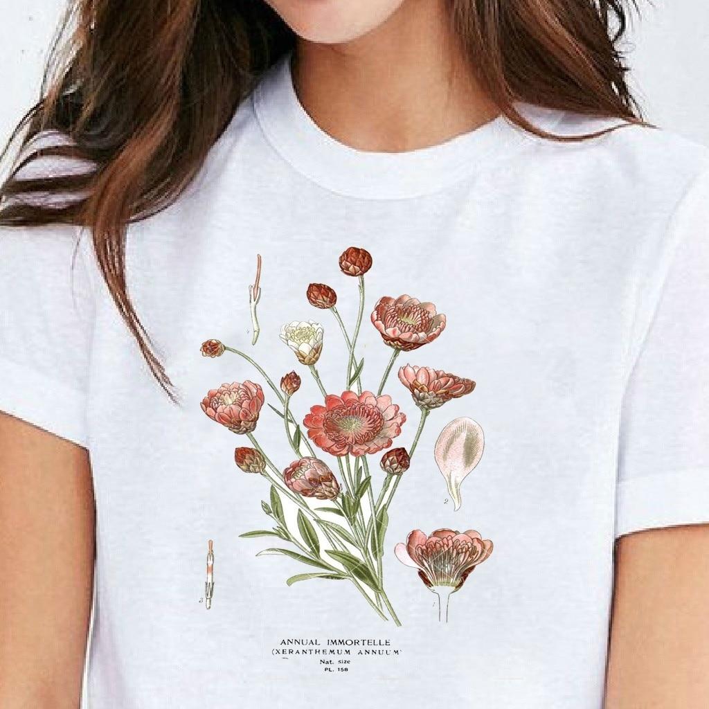 sunfiz HJN Summer Fashion Annuum Unisex TShirt Botanical Illustration Botanical Art Botany Art Flower Tshirt Annual Immortelle(China)