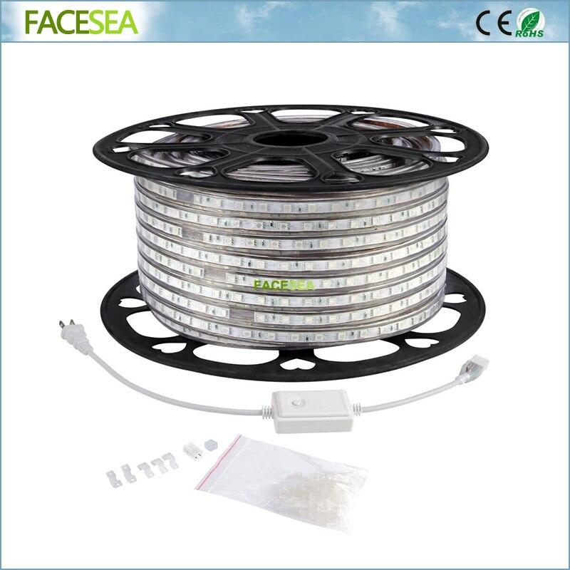100 m AC220V SMD5050 LED Bande Flexible 60 pcs/m Imperméable Lumières avec UE Plug adaptateur RGB/Blanc Chaud/Blanc/bleu/rouge/vert