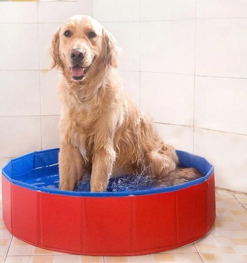 CTWJ0911 Pet beauty bath pool large bathtub toys Drop shipping