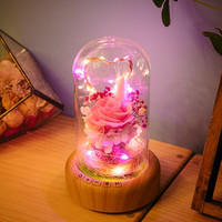 Romantic Valentine S Day LED Night Light Bluetooth Music USB Lamp Eternal Flowers Glass Bottle Lights