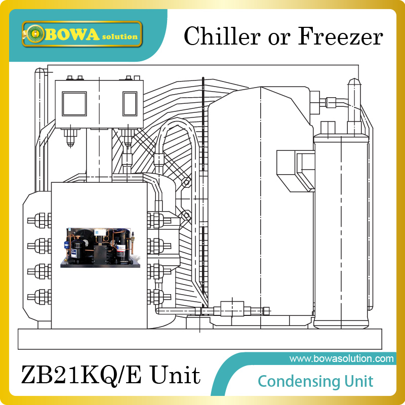 Copland ZB21KQ/E(3HP) Condensing Unit for 10~18m3 chiller or freezer room for seafood process plant