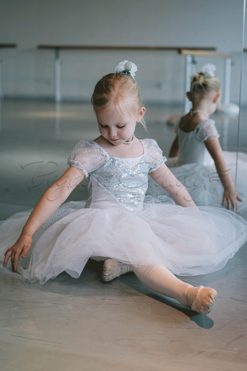 New Little Girl Kids Ballet Dance Tutu Ballerina Girls