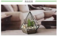 Micro landscape gift gift geometric glass greenhouse that vase