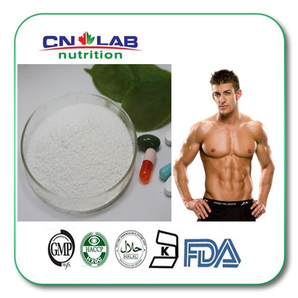 Best BCAA Amino Acid Powder for Workout Recovery  1kg/lot prolab bcaa prolab plus 180капс