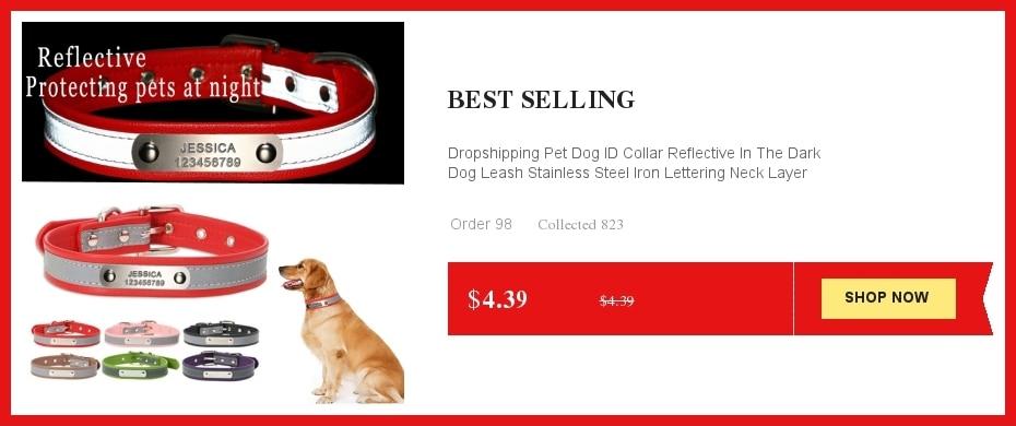 ღ ღPersonalizar Collar grabado gratis perrito colorido Bellknot ...