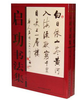 Brush Ink Art Calligraph Album QI GONG Ancient Chinese Poetry Couplet Book