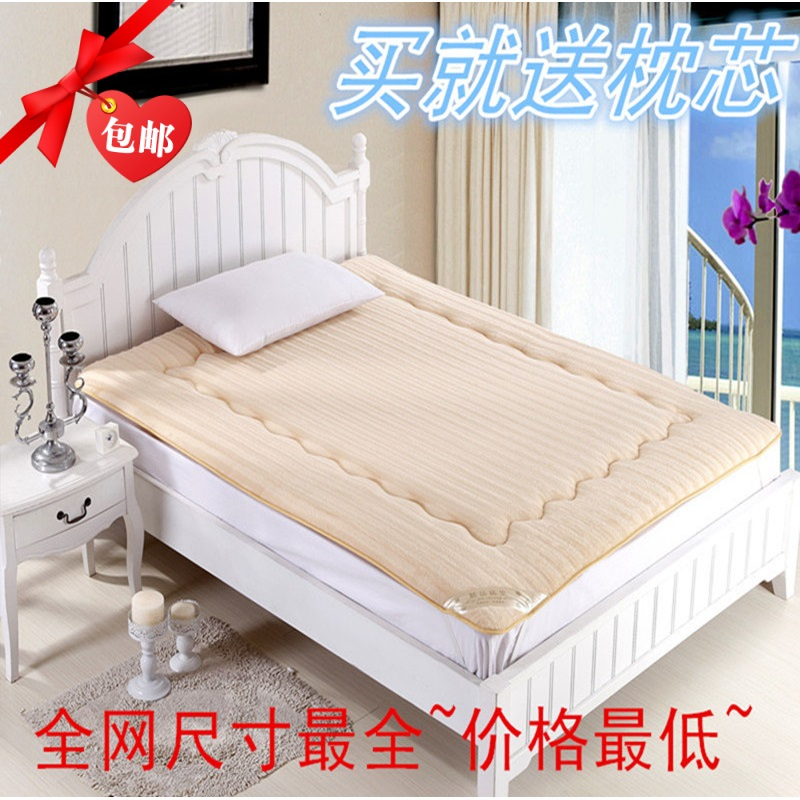 Tatami Mattress Piates Pad Is Thickening Mink Velvet Folding Foam Single Double