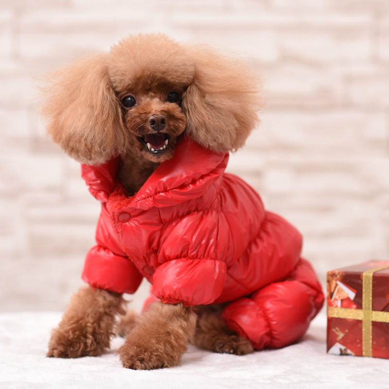 Waterproof Leather Dog Down Coat Pet Dog Clothes in Winter ...