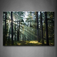 Unframed Wall Art Pictures Sunshine Forest Canvas Print Landscape Posters No Frames For Living Room Home Office Decor