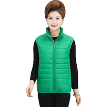 WAEOLSA Autumn Woman Puffer Padded Vest Orange Green Black Gray Quilted Waistcoat Middle Aged Womens Thicken Fleece Lining Gilet
