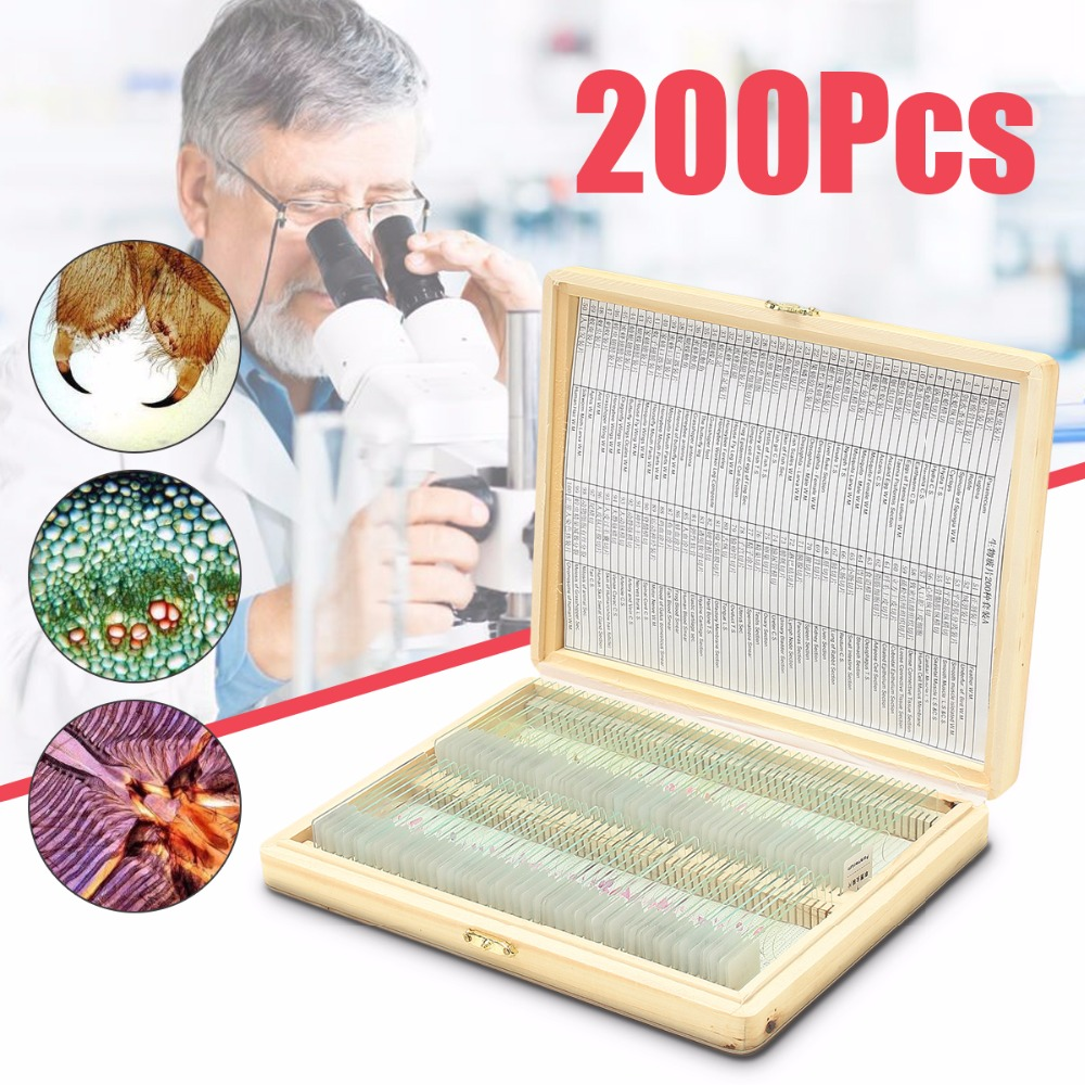 Biology 200 PCS Prepared Biological Basic Science Microscope Glass Slides School and Laboratory English Label Teaching Samples professional school teaching medical microscope 100 kinds botany prepared slides