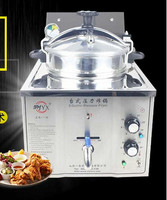 16L Stainless Steel Cooking Countertop Fried Chicken Duck Fish Meat Vegetable Chips Electric Pressure Fryer