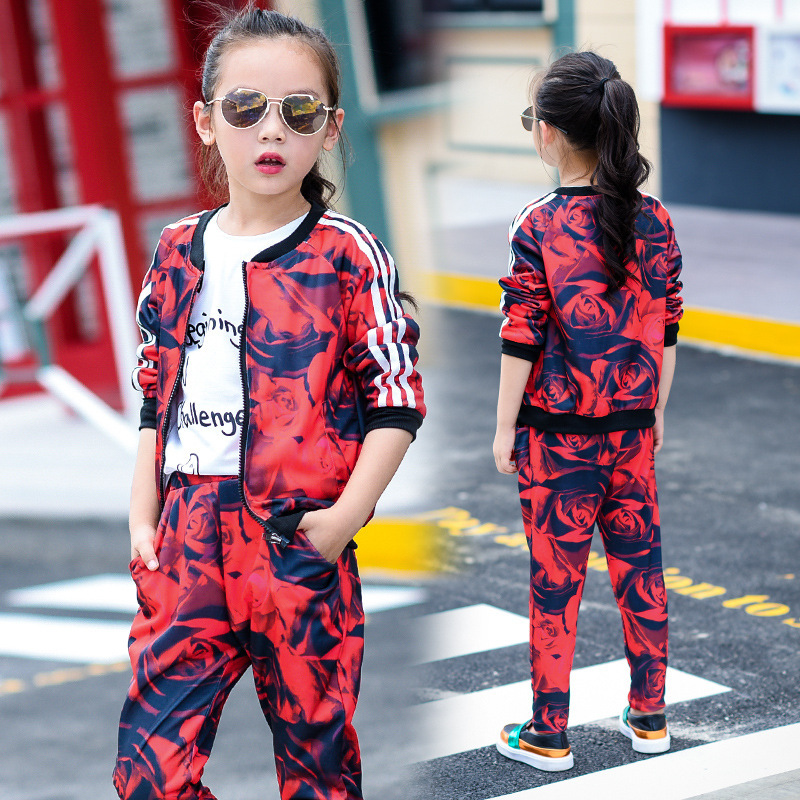ФОТО Girls Autumn Clothing Child Printing Baseball Wear Sweater Suit Leisure Time Pants Parenting Dress 2 Pieces Kids Clothing Sets