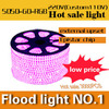 Free Shipping 5050 SMD LED Strip 5M 220V 8W M 60LEDs M IP67 Waterproof SINGLE COLOR