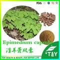 Sexo Melhorar O Produto Em Pó Da Folha do Epimedium Extrato da cápsula 500 mg * 200 pcs 10:1