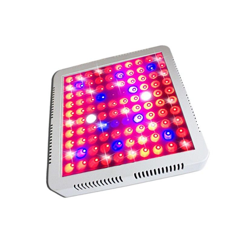 LED à spectre complet 300 W élèvent la lumière pour la plante d'intérieur de serre et la fleur