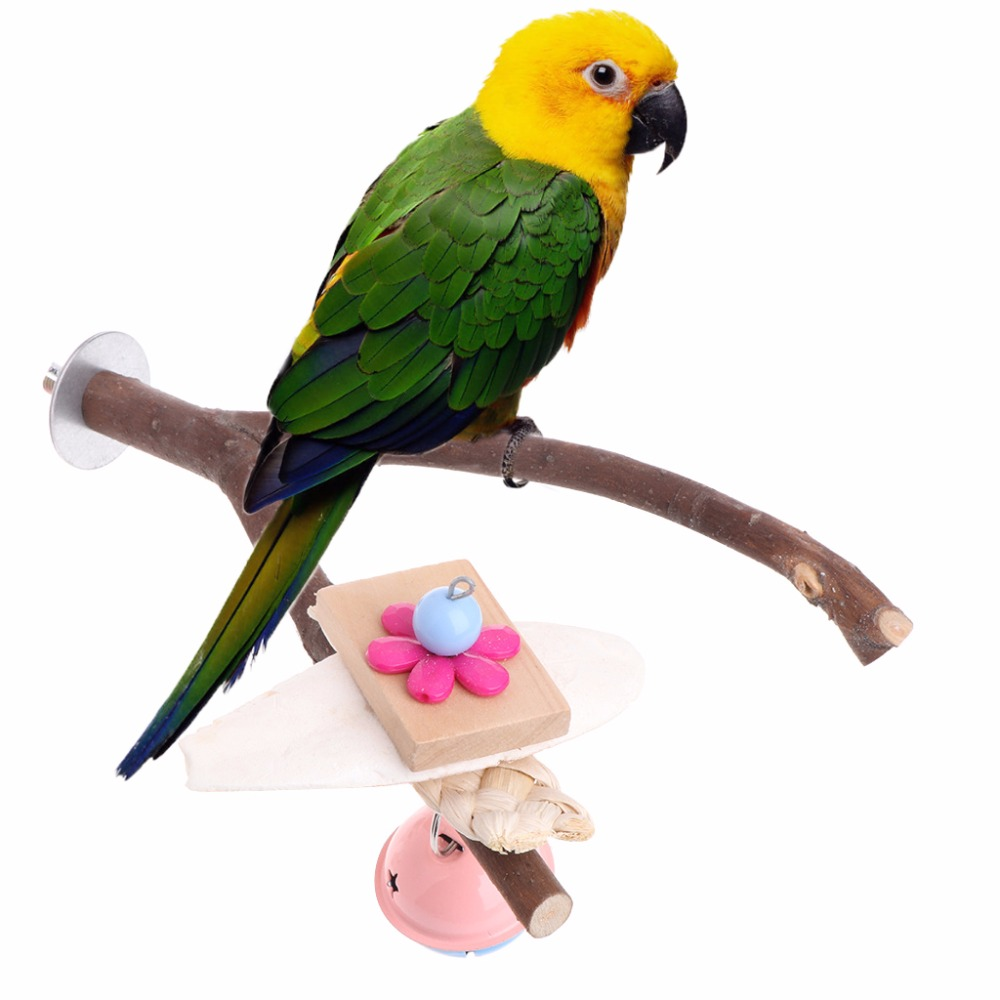 Parrots Birds Perch Stand Holder Natural Wood Tree Crotch Shelf Hanging Toy Bell