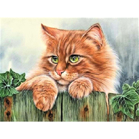 Diy Oil Painting By Numbers Animal Pictures On Canvas Calligraphy Decorative Canvas Painting By Numbers Cat