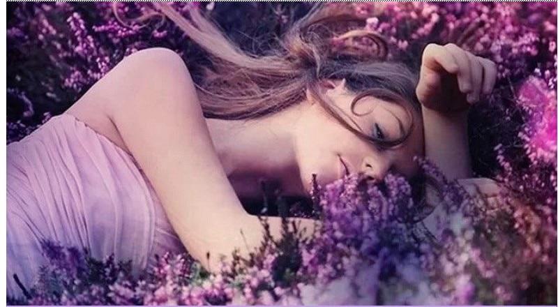 Dimollaure Lavender Esenciální oleje pro aromaterapii Masáž - Péče o kůži - Fotografie 2