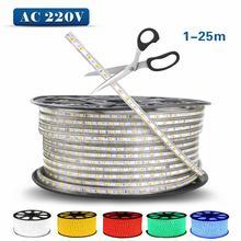 SMD 5050 60leds/m AC220V Waterproof led strip light 1M/2M/3M/4M/5M/6M/7M/8M/9M/10M Flexible lamp tape(Instead of 2835 and 5630)