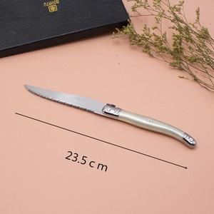 Image 3 - Fransa 6 adet Yüksek kaliteli laguiole paslanmaz çelik biftek bıçağı seti sofra yemek takımı Kremalı Beyaz çelik çatal bıçak kaşık seti