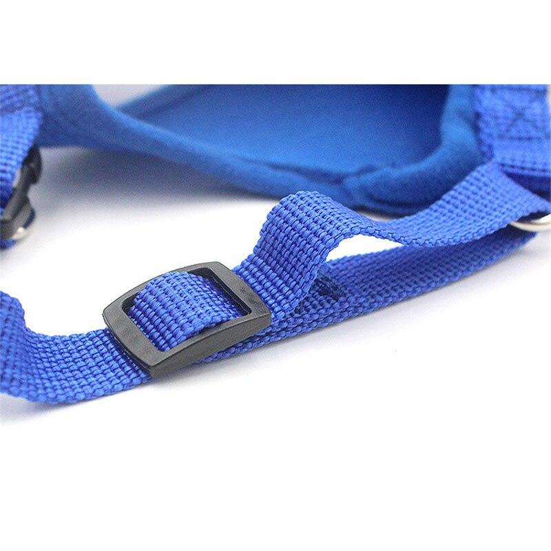 small dog harness (11)