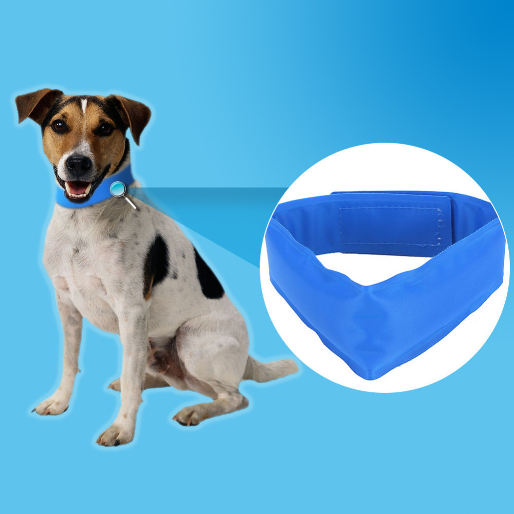 Blue Summer Pet Dog Cooling Collar Dog Pet Cool Sense Cat Clothes ...