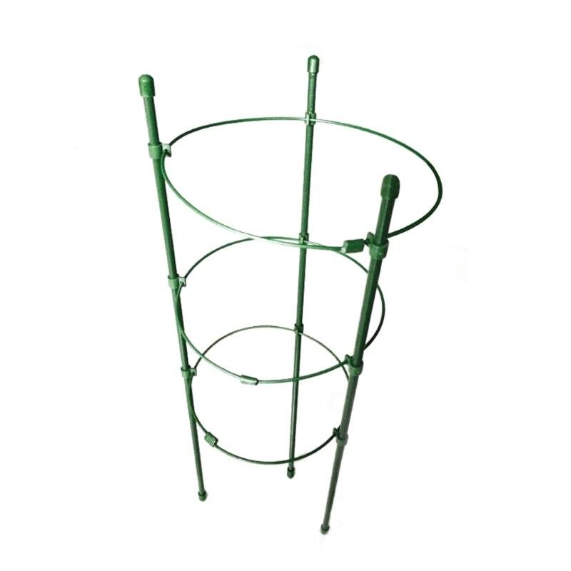 Planta de jardín soporte escalada plantas 45 cm 60 cm cónico ...