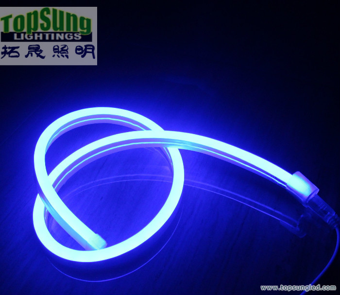 10m 220v rgb led strip light neon flex mini 5050 smd led neon tape 10m 220v rgb led strip light neon flex mini 5050 smd led neon tape lamps ip67 for home or outdoor sign in led strips from lights lighting on mozeypictures Image collections
