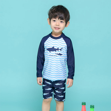 Swimsuit Boys Two Pieces Swimwear Toddler Baby Quick-dry Ruffles Cartoon Bikini Set Outfits Bathing Suit