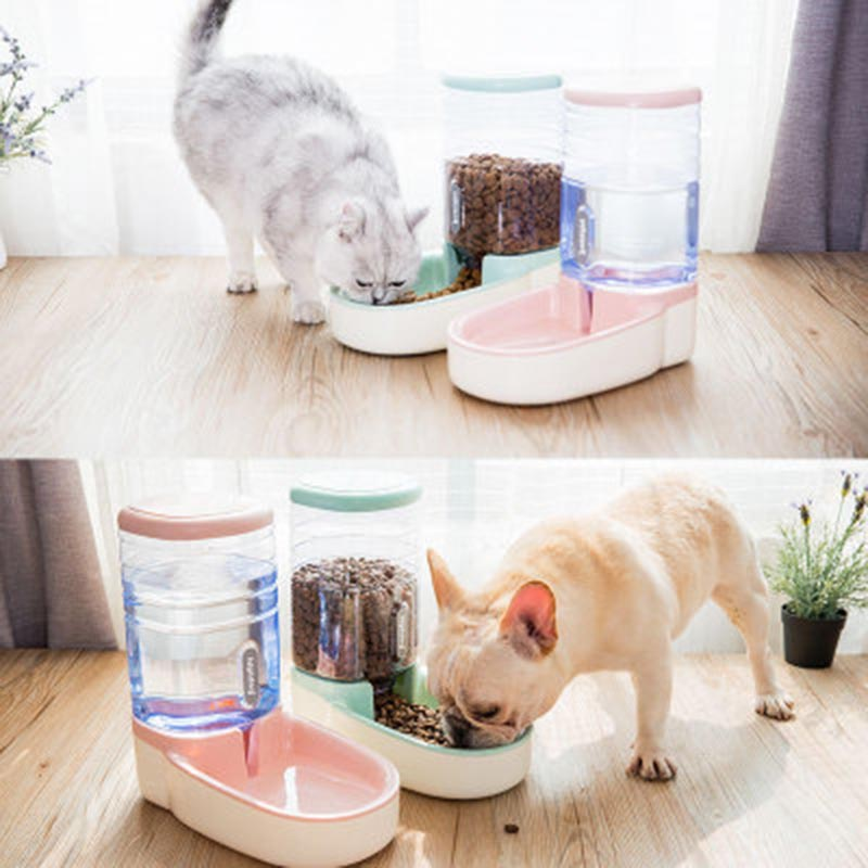 OUYXR 3 8L Cats Dogs Automatic Pet Feeder Drinking Fountain Feeding Bottle Pets Dog Food Bowl Water Dispenser Pet Supplies in Dog Feeding from Home Garden