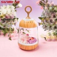 Romantic Flower LED Night Light Rechargeable Streamer Bottle Creative Bulb Rose Gift for Girl Table Lamp with Bluetooth Speaker