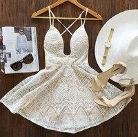 Free Shipping 2015 Fashion V Neck Lace Dress Sling Summer Dress Party Dress Sexy Dress
