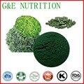 Venta caliente producto de Suplemento Nutricional natural Extracto De Espirulina Cápsulas de Gelatina 500 mg x 100 unids
