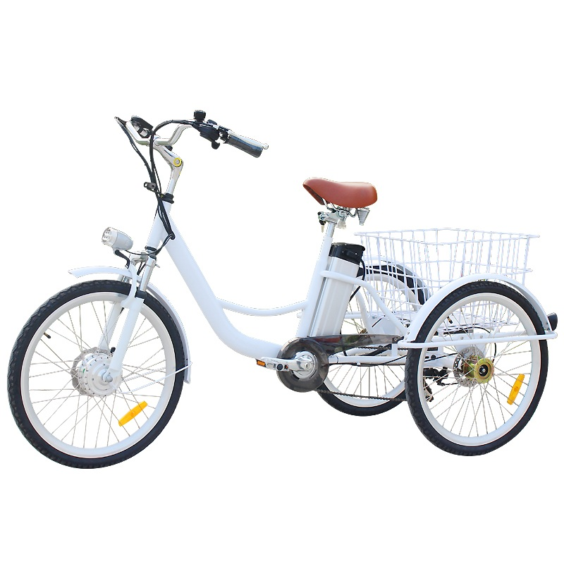 250 W Motor Electric And Pedal 6 Speed Adult Tricycle Bike In France
