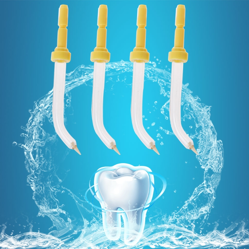 Dental Flosser Konstruktiv 4 Stücke Sprinkler Mundhygiene Zubehör Tasche Ersatz Tipps Für Waterpik Up-To-Date-Styling