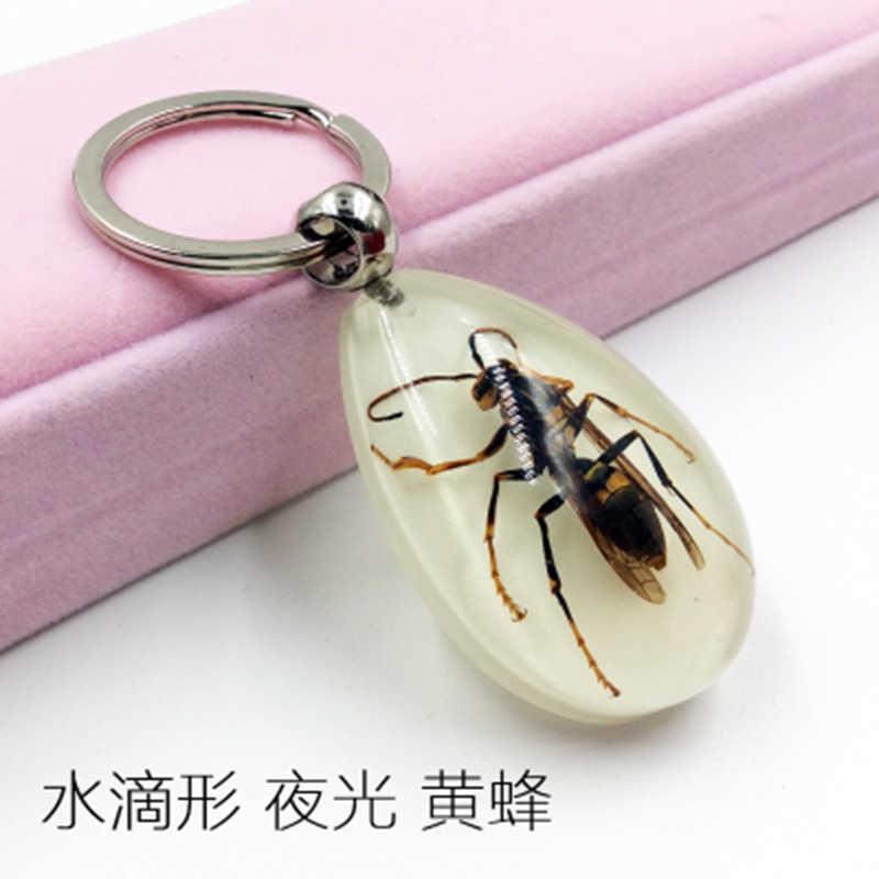 1 piezas de muestra Artificial ámbar llavero coche Real gota sScorpion araña escarabajo verde joyería de taxidermia regalo Accesorios