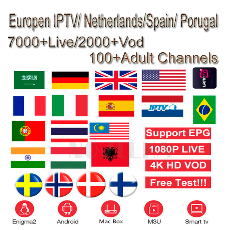 Italia Netherland Arabic Europe USA Canadian African French Latino IPTV Subscription 7000 Channels Stream Live Android M3u
